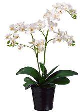"20"" Artificial Phalaenopsis Orchid Arrangement in Ceramic Pot Silk Flower DECOR"
