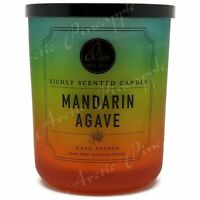 DW Home Extra Large 25.4oz Double Wick Scented 90 Hrs Candle Mandarin Agave