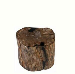 Petrified Wood Stool Accent Table 5