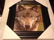 Wolf 11X13 Mdf Framed Picture Poster ( Black Frame )