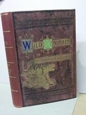 WILD ANIMALS IN FREEDOM AND CAPTIVITY / Weir / Wood &c.