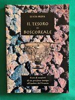 Il Tesoro di Boscoreale - Lucia Oliva - Linea Grafica Aurora - 2002