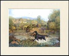 FLAT COATED RETRIEVER RETRIEVES BIRD FROM WATER DOG PRINT MOUNTED READY TO FRAME