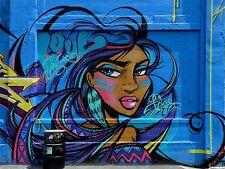 ART PRINT POSTER PHOTO GRAFFITI MURAL STREET FEATHER GIRL NOFL0204