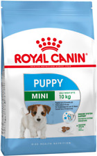 Mini Junior Royal Canin KG. 8