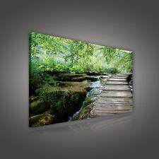 Tela Parete Immagine Tela Legno STEG natura acqua FOTO POSTER 3fx1526o4