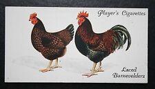 Laced Barnevelder Chickens  Vintage Colour Card ## VGC