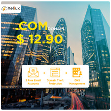 .COM Domain Name + 2 Emails of 100MB Each + Control Panel