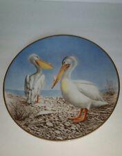 Waterbird Plate by Danbury Mint Pelican by Eric Tenney