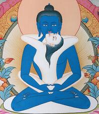 "16"" BLESS TOP CLASS SINKPRINT TIBETAN THANGKA: LOTUS SUTRA SAMANTABHADRA BUDDHA"