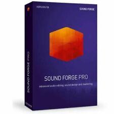 MAGIX Sound Forge Pro Suite  13 - Windows