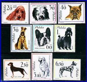 POLAND 1963 DOGS x9 LARGE STAMPS SC#1115-23 MNH DOMESTIC ANIMALS, PETS
