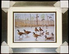 "John MacLeod ""Breaking The Ice"" Hand Signed Art Print Custom Frame, Canada Geese"