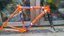 Dolan Frame With Full Carbon Fork 1.7kg superlight