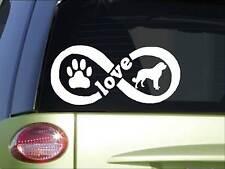 Saint Bernard Infinity sticker *H420* 4 x 8.5  inch vinyl dog decal