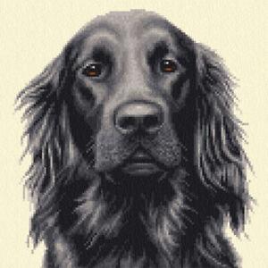 Black FLAT COATED RETRIEVER dog - Full counted cross stitch kit *Jann Designs