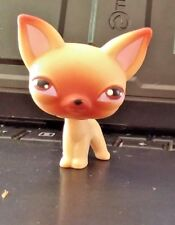 ❤️💙Littlest Pet Shop Chihuahua Dog puppy #1 FIRST LPS EVER MADE 100% AUTHENTIC