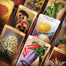 Série 12 Etiquettes Papier Grainetier Graines Fleurs Imprimerie Ancienne 1950