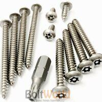 M3 TORX CSK STAINLESS STEEL A2 SECURITY 6 LOBE PIN SCREWS DIN 7991 T10 TX10 C//S