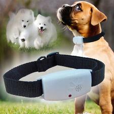 1X Ultrasonic Mosquito Bug Pest Repellent Repeller Dispeller Dog Cat Pet Collar*
