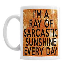 Im A Ray Sarcastic Sunshine Every Day Coffee Tea Mug Funny Birthday Office Gift