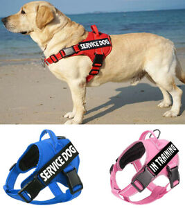 No Pull Service Dog Harness & 2 Free Patches Emotional Support Puppy Pet Vest