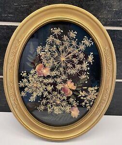 Vtg Oval Gold Picture Frame Glass Pressed Flower Arrangement Black Background