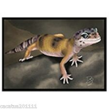 6 x Reptile Greeting Cards w. Envelopes -1 Of Each Design -Blank For Own Message