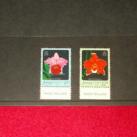 JERSEY MINT STAMPS 15.11.1984 JERSEY ORCHIDS 1ST SERIES BOTTOM SELVEDGE