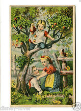 Victorian Trade Card ACME SHIRT STORE Newark NJ children in fruit tree Scarce!