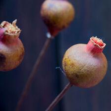 1Pc 40Cm Artificial Pomegranet Fake Pomegranate Fruit Home Decor Charming Pretty