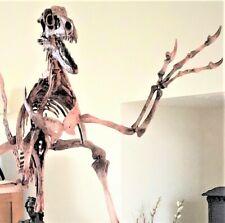 VELOCIRAPTOR Dinosaur MOUNTED Skeleton Fossil Replica - 6 ft (2m) long LIFE SIZE