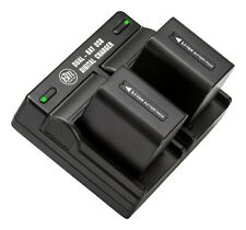 BM NP-FV70 2 Batteries & Dual Charger for Sony HDR-CX220 CX230 CX290 CX380 CX430