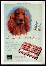 HARRIS TWEED - FABRIC - TEXTILE - SPANIEL 1951 MAGAZINE ADVERT