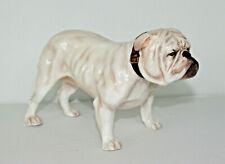 Large Vintage Royal Doulton Bulldog Hn 1073x. Excellent condition