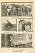 Cheyenne, WY, Horse, Outlaw Of Elk Hollow, Cowboy, Ranch, 1902 Antique Print