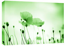 GREEN FLORAL CANVAS POPPIES WALL ART PICTURE BOX CANVAS 77 x 52 cm 3 cm frame