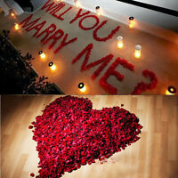 1000 Silk Red Rose Petal Flower Confetti Celebration Wedding Decoration