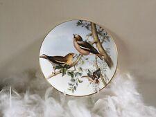 Coalport bird decor plate with Chaffinch by John Gould, plate no.5, bird plate