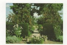 Tintinhull House Garden Fountain Garden Yeovil Postcard 929a