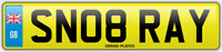 RAYS SNOB NUMBER PLATE SN08 RAY CHERISHED CAR REG RAYMOND RAYS RAY NO ADDED FEES
