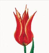 THEA GOUVERNEUR 515 Rosso Giallo Lily Tulipano Lino Kit contato