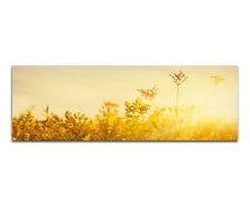 Deko-wandbilder mit Grafik & Druck und Natur