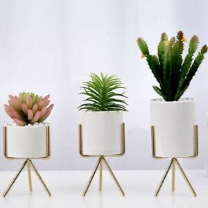 Pack of 3 Ceramic Succulent Flower Pot with Iron Stand Planter Rack Home Garden