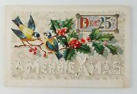 Postcard Merry Christmas December 25th Birds 1912