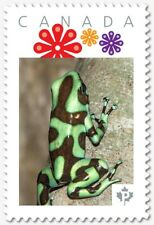 GREEN DART FROG = Personalized Picture Postage stamp MNH Canada 2018 [p18-07s03]
