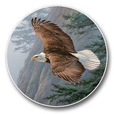 Majestic Soaring Eagle Auto Coasters