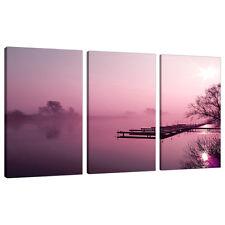 Set of 3 Plum Wall Pictures Split Canvas Landscapes Art Prints 3120