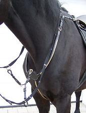 Vorderzeug mit golden Nieten weich unterlegt + Martingal schwarz WB / XWB / KB