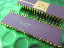 MC6800L. MC6800P Vintage Motorola CPU, Gold Legs and Top, Ceramic. dc1980. NEW.